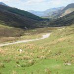 2002_Scotland_West_img_0425