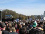 2010_Rally_signs1_IMG_1379